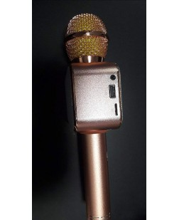 iNEXT-BS573FM Wireless Bluetooth Microphone Recording Condenser Handheld Microphone Stand With Bluetooth Speaker