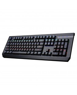 ZEBRONICS MaxPlus LED USB Gaming Keyboard with 104 keys + 12 multimedia keyboard keys & 10 LED light modes with 1 Year warranty from Zebronics